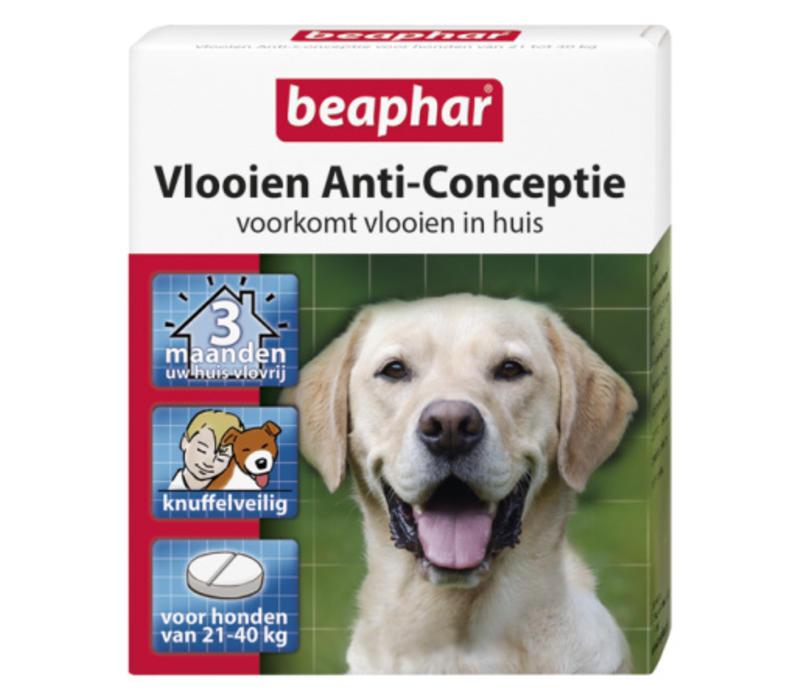 Beaphar | Vlooien anti conceptie hond l | 3 stuks | groot | Large