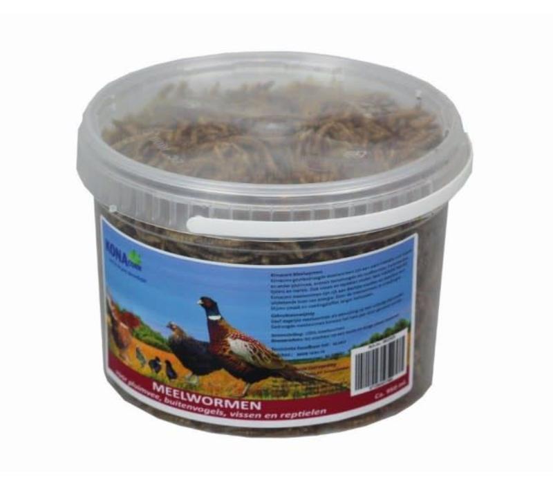 KC meelwormen 5 liter
