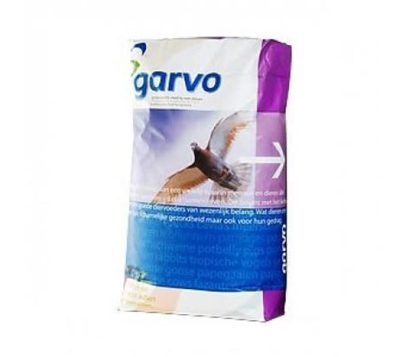 Garvo Solution 2