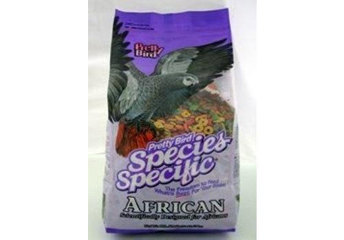 Pretty Bird Pretty Bird Special african