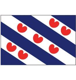 Faber Pro-Motion vlag Friesland 20 x 30cm