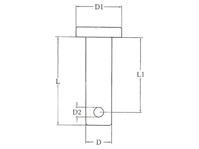 Lankhorst Taselaar Borstbout RVS 6,0 x 20,0 mm