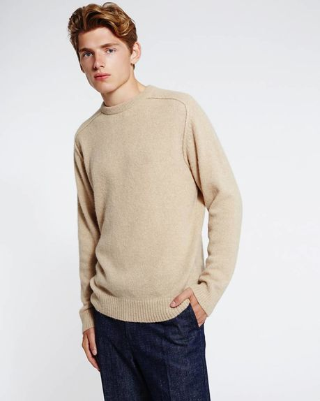 Detale Studio Bobby Raglan Sweater sandy