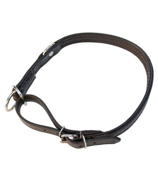 Euregiohunt Halsband - leder comfort 40cm