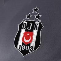 Beşiktaş Adidas trikot 17-18 grau