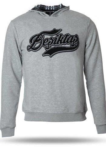 Beşiktaş Sweater heren grijs 7718261