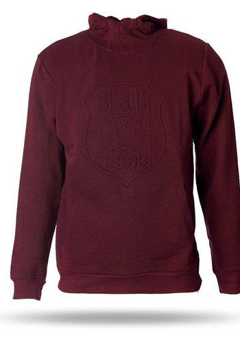 Beşiktaş Hooded sweater men 7718295