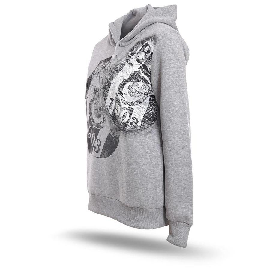 Beşiktaş Hooded Sweater Dames K8718291 Grijs