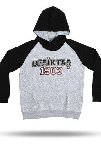 Beşiktaş Raglan hooded sweater kinderen 6818204