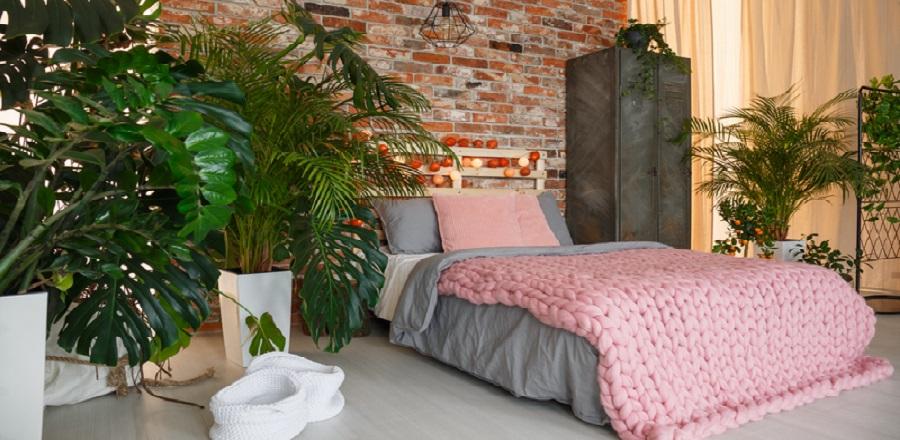 Blog - Maak een plantentuin in je slaapkamer! - Dekbedovertrekken & Zo