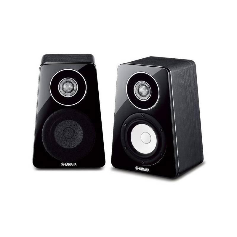 NS-B500 zwart