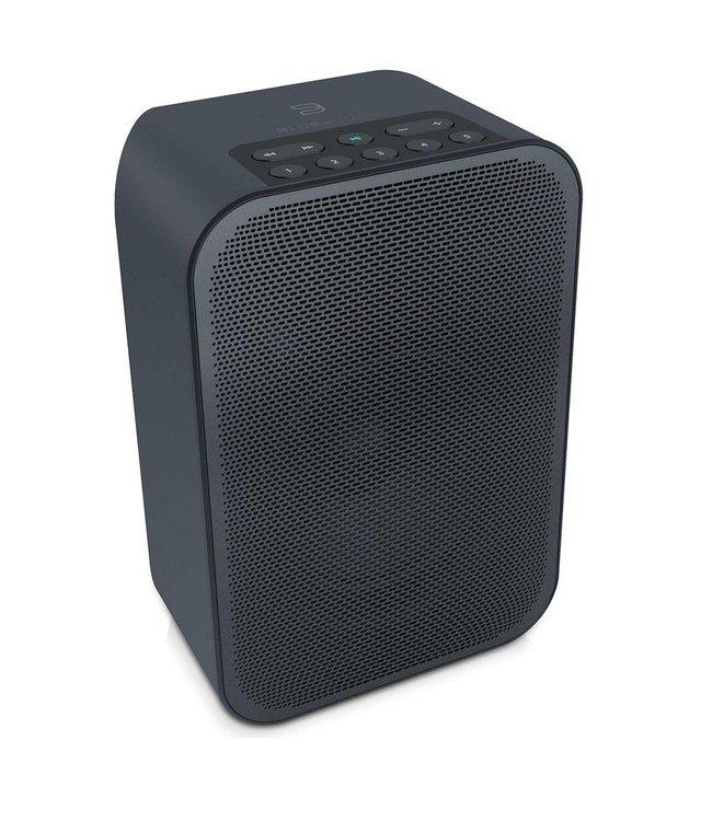 Bluesound Pulse Flex + Battery Pack