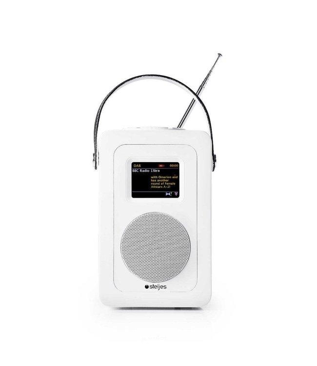 Steljes Audio SA60