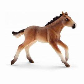 Schleich Schleich 13807 Mustang veulen