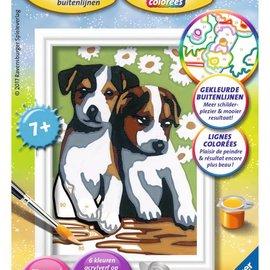 Ravensburger Schilderen op nummer - Schattige puppies