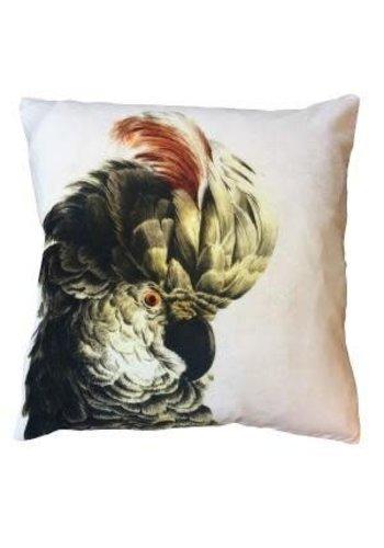 Vanillafly Velvet Cushion Parrot