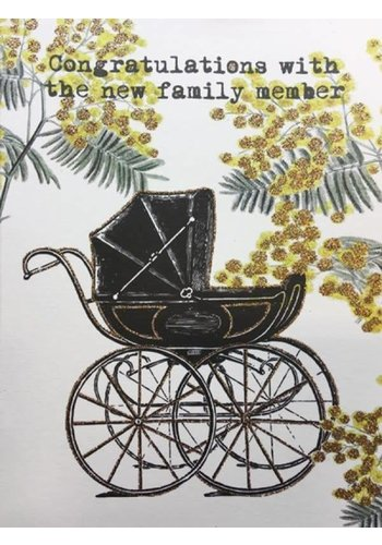 Vanillafly A5 Greeting Card New Family Member