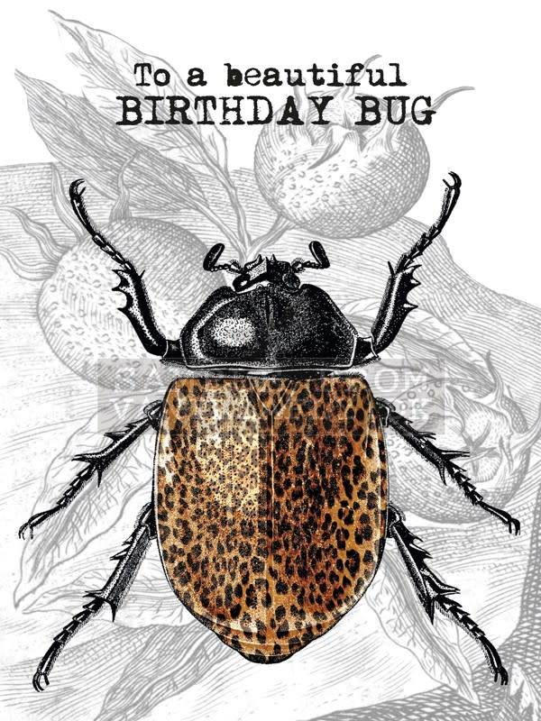 A5 Greeting Card Birthday Bug