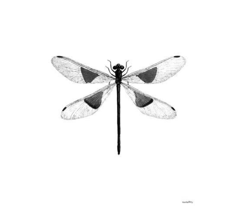 Frame 20x25cm Dragonfly