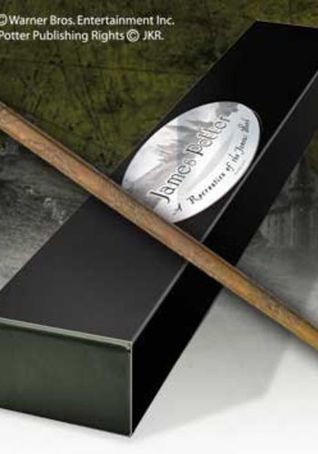 Harry Potter-James Potter's Wand