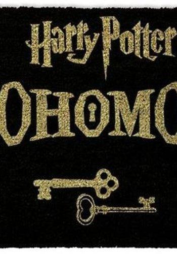 Hole In The Wall Harry Potter Alohomora - Deurmat