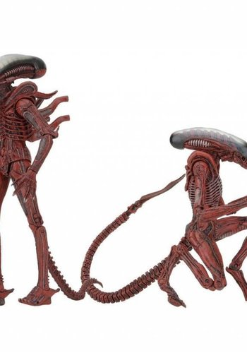 NECA Aliens:Genocide Big Chap & Dog Alien 2-pack 7 inch AF