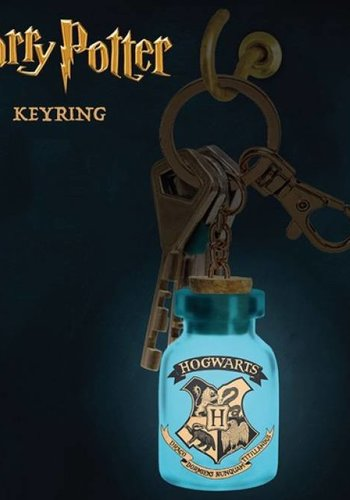 Harry Potter: Light Up Keyring