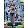 Hottoys Harley Quinn Sixth Scale Figure by Hot Toys