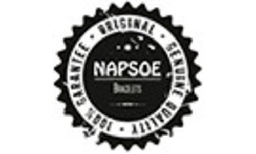 NAPSOE