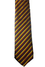 Old Albanian Club Tie