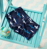 Boys Swim Trunk Shark