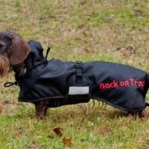 Back on Track Standaard deken Teckel