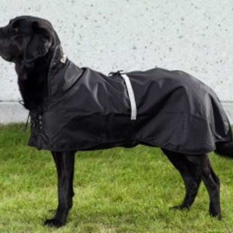 Back on Track Back on Track Honden Regendeken zonder vulling