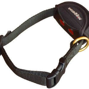 Niggeloh Niggeloh SAFETY Dog Collar With Receiver Pouch