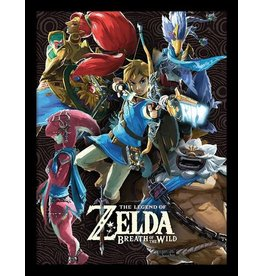 PYRAMID Legend of Zelda Breath of the Wild affiche encadrée Les Prodiges 45 x 33 cm