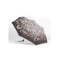 Regenschirm | ciao bella ombrella | plenty plants