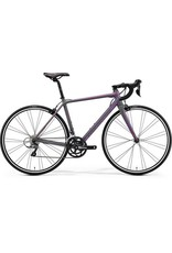 Merida Merida Scultura Juliet LDS 100 2018 Grey/Purple