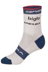 Endura CERVELO BIGLA TEAM SOCKS
