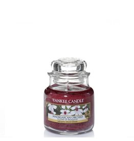Yankee Candle Madagascan Orchid Small Jar