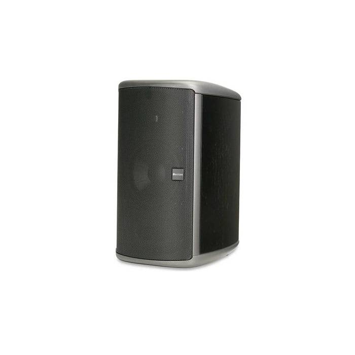 Boston Acoustics E60