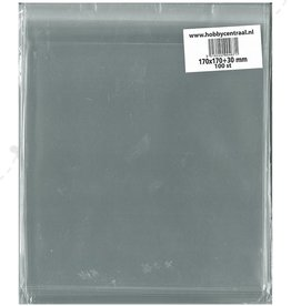 Hobbycentraal Square Card bags with adhesive strip 100st 170x170x35