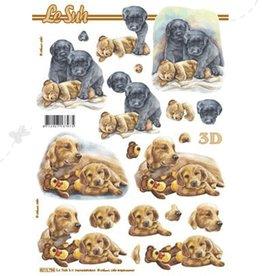 Le Suh 3D ark