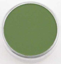 Pan Pastel PanPastel Chrom.Oxide Green Sh