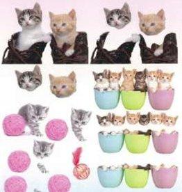 Hobby Idee 3D vel Katten Hobbyidee