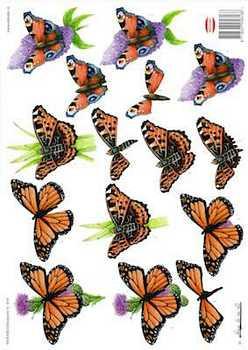 Wekabo 3D vel Vlinders