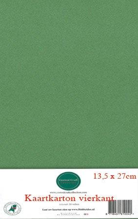Hobbycentraal 13,5 x 27 cm Kaartkarton Olijfgroen