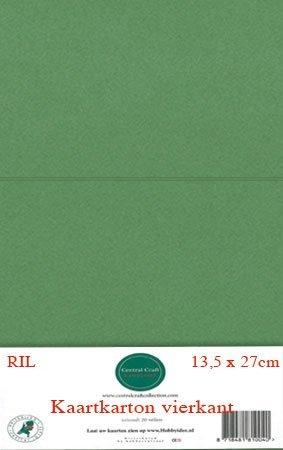 Hobbycentraal 13,5 x 27 cm Kaartkarton   20 vel  Olijfgroen