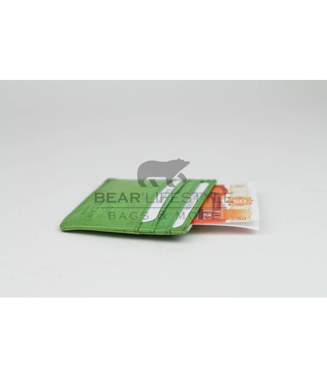 Bear Design Visitenkarten Etuis - CL14617 Kiwi