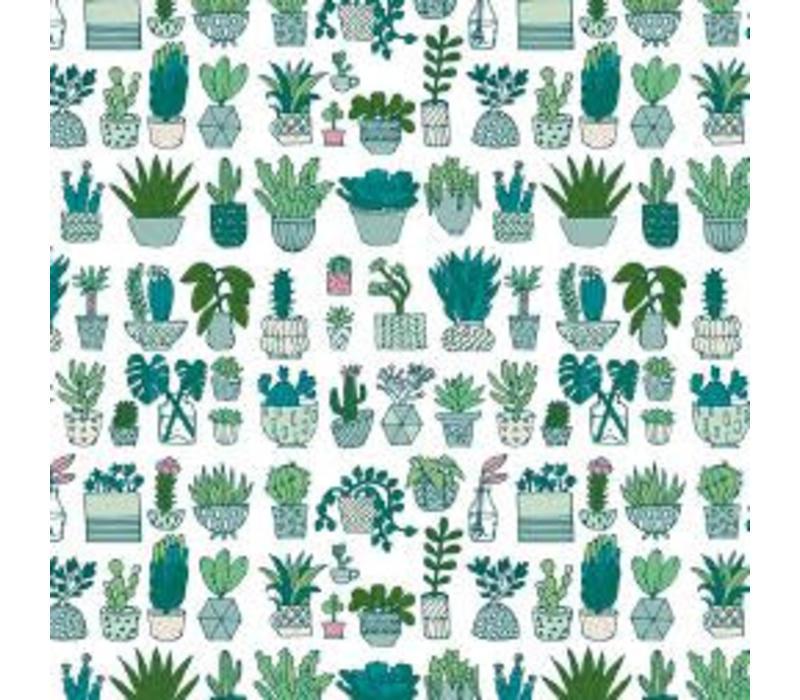 Gelamineerd Katoen Cactus