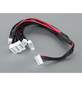 SpeedDrones JST-XH 4S 1x  male to 6x female balans kabel